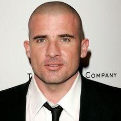 Dominic Purcell wiki, affair, married, Gay with age, height, actor,
