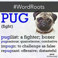 "<pugn> is the base in impugn, repugnant, pugnacious. <pug> is the compressed base in pugilist. Latin: pugnare "" To fight"""