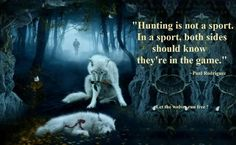 I sooooo agree with this. I am very anti-hunting for sport!!! It's just wrong.