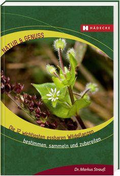 Für Selbstversorger & Sammler: Die 12 wichtigsten essbaren Wildpflanzen