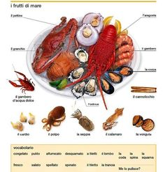 Learning Italian Language ~ seafood