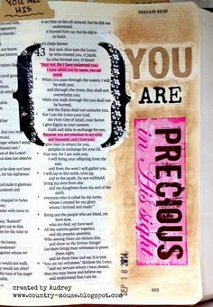 A Day in the life of a Country Mouse: Journaling Bible: YOU are Precious