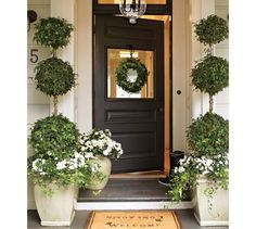 front entry love the door- wish my topiaries looked like this!