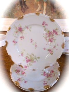 Haviland Limoges Schleiger CHF1896 Plates 6 Six Gold Daubs Blank 1251 Pink Roses #ChasFieldHaviland