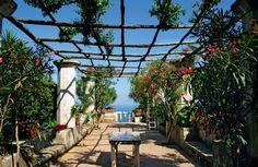 Ravello: Villa Rufolo, Ravello (from Italy in Bloom: The Top Gardens of Campania photo gallery)  >> Scopri le Offerte!