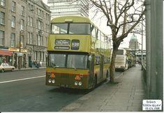 Dublin Street, Dublin City, Old Pictures, Old Photos, Free Republic, Bus Coach, Throwback Thursday, Coaches, Buses