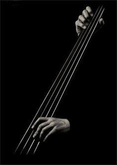 Music meets Art. Absolutely gorgeous black and white portrait of hands playing a…