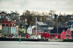 Top 16 Things to do in Lunenburg and around Lunenburg Lunenburg Nova Scotia, Stuff To Do, Things To Do, East Coast Travel, Small Towns, New England, Canada, Architecture, Street