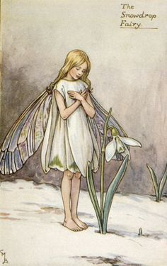"thefavoriteartilike: "" The Snowdrop Fairy by Cicely Mary Barker """