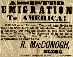 essays on migration into the united states