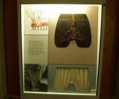 Haithabu/Hedeby trousers/pants