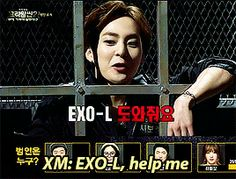 ''everyone regrets choosing minseok as criminal when he called exo-l for help'' exo xiumin on Crime Scene 2 gif - this was the best thing EVER XD Loved him in that show!! <3