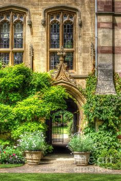 University of Oxford, England -=- Gardens at Wolfson College :: Impressive & Classic, Beautiful Windows :)