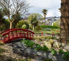 Royal Avenue Gardens 🌳 #discoverdartmouth #royalavenuegardens #dartmouth #magical #pictureperfect #photooftheday #park #bridgeshot #goexplore #discover #photography #southdevon #devon