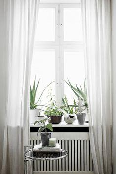 Sweet Home | via Atelier Deco
