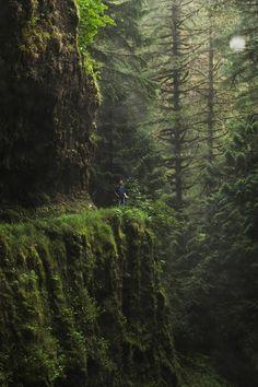 decepticun: Eagle Creek Trail, Oregon | by Chris Ebarb