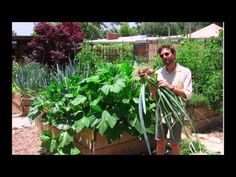 Jesse DuBois is an urban agriculturalist. He moved to Los Angeles to become a screenwriter, but instead got caught up in reshaping the food system. He is the CoFounder and currently serves as the Chief Eclectic Officer for two start-ups: Farmscape, an urban farming maintenance company, and Agrisaurus, a web-based polyculture gardening assistant....