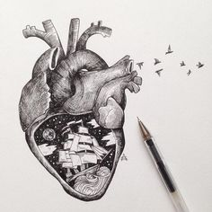 With tiny, precise pen strokes and careful cross-hatching, Italian artist Alfred Basha captures the complexity of natural life. His drawings interweave ani Heart Pencil Drawing, Pencil Drawings, Heart Drawings, Ink Illustrations, Illustration Art, Alfred Basha, Arte Black, Herz Tattoo, Cross Hatching