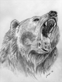 bear sketches | realistic bear drawing by VempireTattoo on deviantART Grizzly Bear Drawing, Bear Sketch, Realistic Drawings, Art Drawings, Polar Bear Tattoo, Tatoo, Bear Head, Animal Sketches, Bear Art