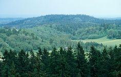 Suur Munamägi is the highest point in Estonia at 1,043 ft (318 m).