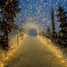 Reasons to Start Planning Your Alberta Winter Vacation The Light Walk at Grouse Mountain, Vancouver, BC Oh The Places You'll Go, Places To Travel, Places To Visit, Sunshine Coast, Mountain Photos, December, Victoria, Canada Travel, British Columbia