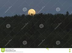 Photo about Full moon top of the hill in Finnish Lapland. Image of night, full, finnish - 74880219 Full Moon, Stock Photos, Night, Image, Harvest Moon, Blue Moon