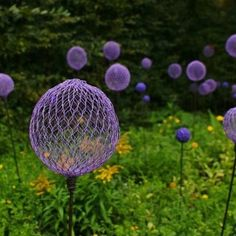 Chicken wire garden ornament.  Purple balls or orbs made from chicken wire, rebar and spray paint. Allium Flowers