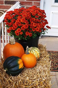 autumn decorations by amber's-ambry, via Flickr