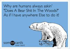 Why are humans always askin' 'Does A Bear Shit In The Woods?' As if I have anywhere Else to do it!