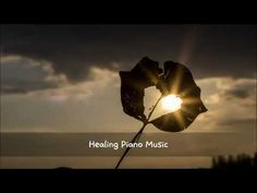 피아노 앤(Piano Ann) - 행복의 날개