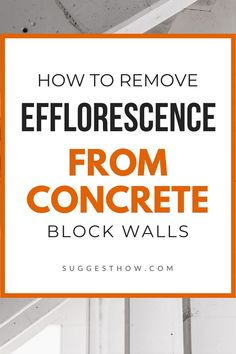 Efflorescence is not a permanent problem. Know how to remove efflorescence from concrete block walls in 5 simple steps. #cleaning #homeimprovement #DIY #home Concrete Block Walls, Concrete Wall, French Drain, Vinegar And Water, Cleaning Walls, Basement Walls, Plastic Sheets, Cool Tools