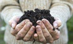 6 Steps to Perfect Compost
