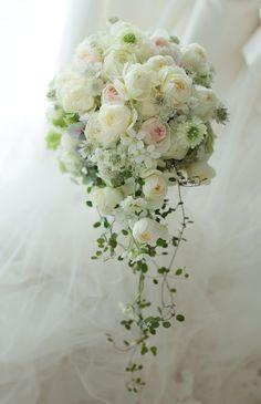 セミキャスケードブーケ 椿山荘東京さまへ 細く流れるラインで Cascading Wedding Bouquets, Cascade Bouquet, Spring Wedding Flowers, Bride Bouquets, Flower Bouquet Wedding, Phalaenopsis Orchid, Funeral Flowers, Bridal Boutique, Love Flowers