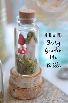 How To Make A Miniature Fairy Garden In A Bottle: Tutorial using polymer clay to make adorable mushrooms and a fairy house, and then…