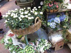 Blomster i kurv, buketter og lys