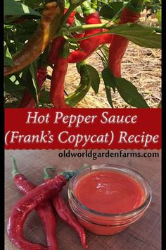If you are looking to make your own hot pepper sauce, look no further! This recipe tastes just like Frank's and can be made in minutes! Hot Pepper Sauce - How to make copycat Frank's hot sauce from fresh peppers. Cayenne Pepper Recipes, Hot Pepper Recipes, Cayenne Pepper Sauce, Hot Sauce Recipes, Hot Pepper Sauce, Hot Sauce Canning Recipe, Tuna Recipes, Salsa Recipe, Butter