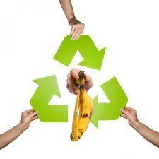 Aprende el arte del reciclaje de comida | Recetas Thermomix https://recetasconthermo.com/aprende-el-arte-del-reciclaje-de-comida/