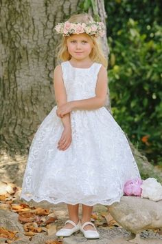 6a99b547ab8 Tip Top flowergirl dress style 5673 available online for purchase.