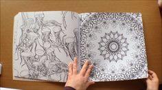 Fantastic Planet By Steve McDonald Colouring Book Flip Through