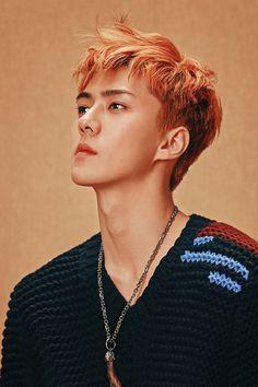 Don't be afraid he love is he way🍁Exo — ohxing: Sehun // SuperElle August 2017 Elvis Presley, Chanyeol, Exo Exo, Ko Ko Bop, Peinados Pin Up, Kim Minseok, Exo Members, Block B, Taemin