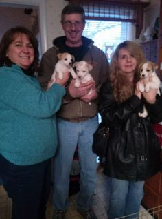 Joy' s puppies are as happy as they are cute to have been adopted by the same family. Happy times three.