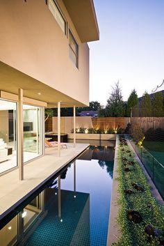 Garrell Street - COS Design contemporary landscape