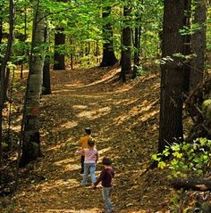 Hiking trails suitable for kids near Greenville, SC