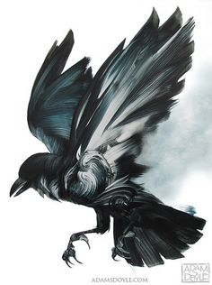 Raven tattoo for my literary sleeve (when older)  Adam S Doyle, paintings - ego-alterego.com