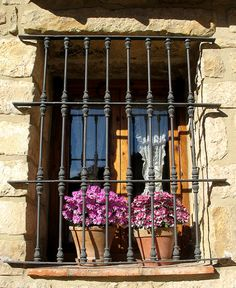 grills on window and potted plants of sill of building in Valencia, Spain