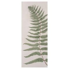 Fern with watercolour & stitch on hand dyed paper. By Kate Nicole OBC