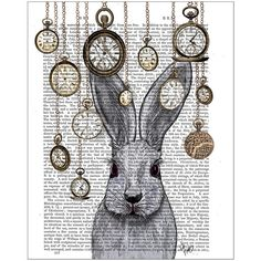 FabFunky Rabbit Time Print ($47) ❤ liked on Polyvore featuring home, home decor, wall art, art, rabbit home decor, paper wall art e bunny home decor