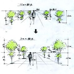 Low Maintenance Landscaping Front Yard Curb Appeal - - Landscaping Ideas Videos For Backyard With Hot Tub - Landscaping Trees Art - Landscaping Ideas Videos On A Budget Front Yard Landscape Architecture Drawing, Landscape Sketch, Landscape Drawings, Landscape Design, Plant Sketches, Tree Sketches, Drawing Sketches, Art Drawings, Perspective Drawing Lessons