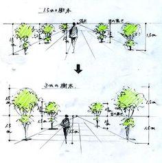 手描きパースの描き方(樹木の描き方)|手描きパースと富士山の絵