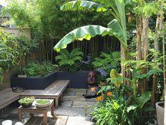 Small Tropical Gardens, Tropical Patio, Tropical Garden Design, Tropical Landscaping, Small Garden Design, Small Gardens, Backyard Landscaping, Small Jungle Garden Ideas, Small Garden Oasis